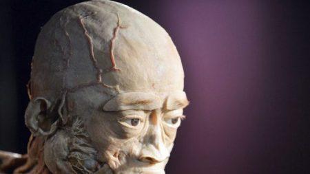 Mostra di cadaveri, prigionieri di coscienza potrebbero essere la fonte dei corpi