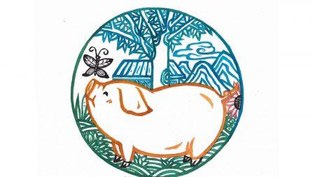Le celebrità nate nell'anno cinese del maiale