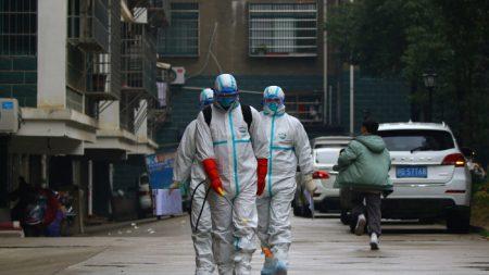 Una prospettiva tradizionale sulla pandemia, cause e soluzioni