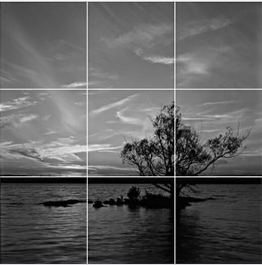 Una griglia su una foto che mostra un albero su un fiume: si vede chiaramente come l'albero 'sieda' sulle linee di intersezione