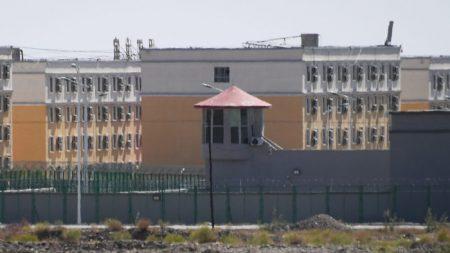 Capelli in vendita nel mondo, vengono dai campi di concentramento cinesi?