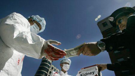 Il suicidio di un chirurgo cinese accende i riflettori sui trapianti horror della Cina