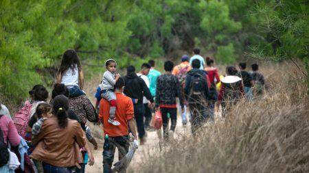 Usa, continua l'emergenza migratoria lungo il confine meridionale | Ntd News