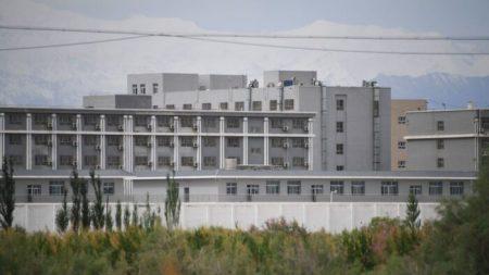 Propaganda su Twitter e Facebook: così Pechino contrasta le critiche internazionali sullo Xinjiang