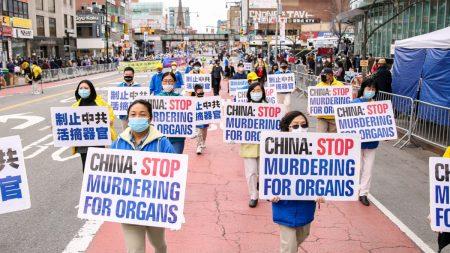 Il Parlamento texano denuncia il prelievo forzato di organi in Cina