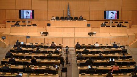 Attivista: Pechino lavora per sovvertire il sistema dei diritti umani delle Nazioni Unite