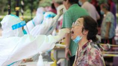 L'epidemia di Nanchino si diffonde in 27 città cinesi