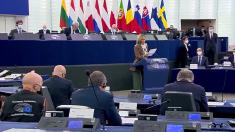Strasburgo, l'eurodeputata Donato: a Trieste diritti umani calpestati