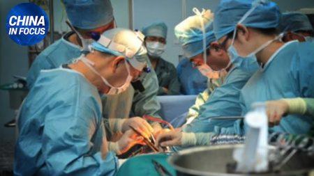Prelievo forzato di organi. Ecco come 'fa soldi' la dittatura comunista cinese | China in Focus